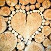 heart-1288420__340